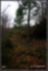 915=03-02-19_1130503 copy.jpg