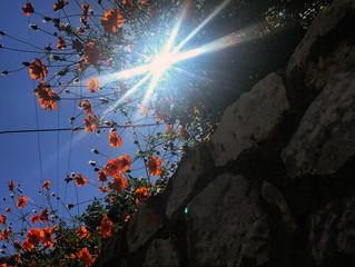 ΦΩΤΟΓΡΑΦΙΚΟΣ ΠΕΡΙΠΑΤΟΣ ΚΑΙ ΜΑΘΗΜΑ ΦΩΤΟΓΡΑΦΙΑΣ ΣΤΑ ΑΝΩ ΔΟΛΙΑΝΑ. 29-09-19