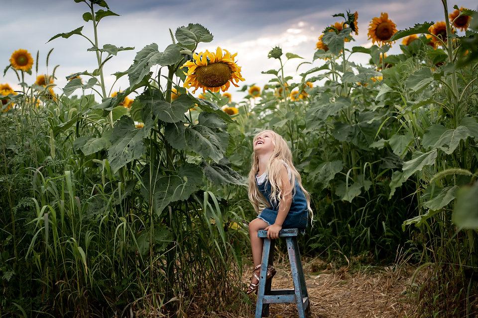 sunflowers2020-46DONE.jpg