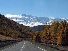 Altai w.JPG