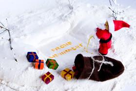 Die etwas andere Weihnachtskarte ;)