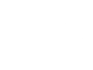 Toy Room London Club Nightclub Cocktail Bar Private Event Venue Hire best night out logo