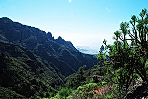 randonnees Tenerife
