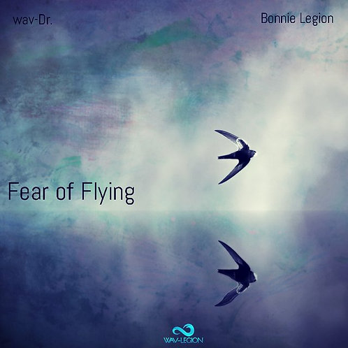 Fear Of Flying- Single use Music Licence