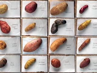 You say potato, I say potato