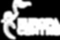logo 33Cutout1.png