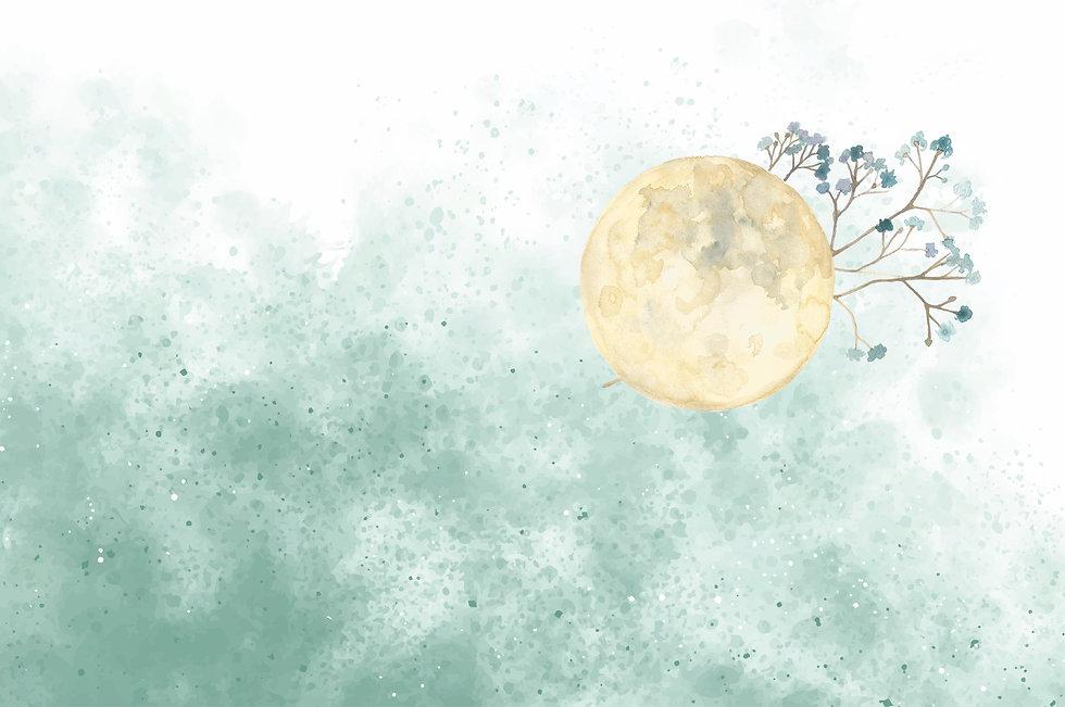 Moon + Statice.jpg