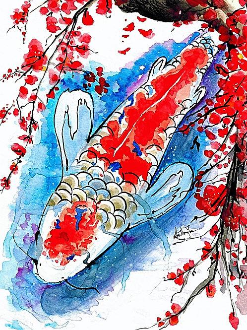 Koi x Cherry Blossom