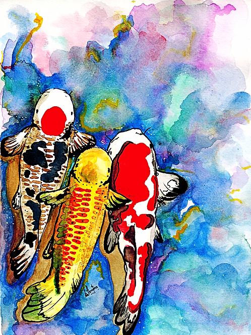 Koi x Trio