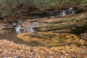 Smoky Mountain waterfalls and fall foliage swrls