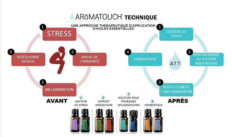 doterra_Aroma_diagramme10.png