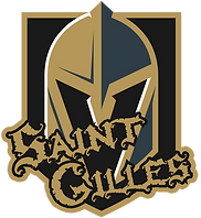 Golden Knights 2020.png