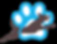 WPDR webiste logo.png