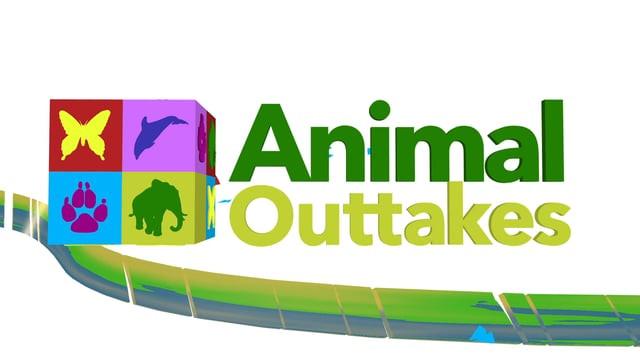 Animal Outtakes Intro