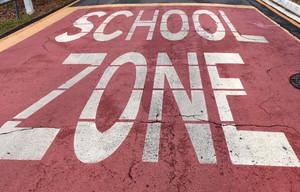 Brisbane Public Schools - A Quick Guide