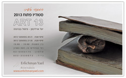 יעל ארליכמן, ארט 13