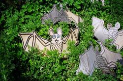 01_ Bats