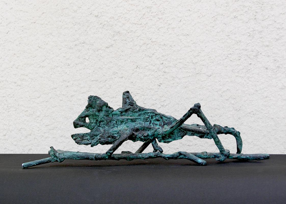 05_ A Chameleon