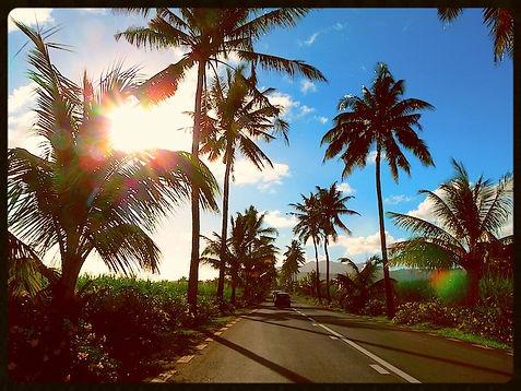 Дороги Маврикий - www.deluxe-mauritius.com
