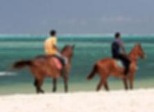 Прогулки на лошадях - Маврикий - www.deluxe-mauritius.com