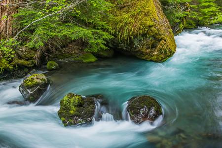 dungeness_river-93.jpg