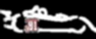 TTE lr performance total cloud Vdev seat leon TCR course concession sport automobile circuit albi pilote renaud malinconi sponsoring mecenat defiscalisation