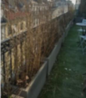 Une pelouse à tondre, une taille de haie, arbres et arbustes, Esprit Payasage à Albi, Tarn, vous propose l'entretien de vos espaces verts ainsi que l'aménagement de jardin. Esprit Paysage votre jardinier paysagiste dans le Tarn  à Albi. Entretien jardin à Albi, Tarn. garden Staging albi