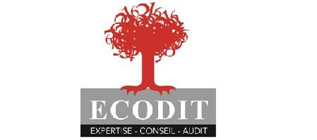 logo ECODIT.jpg