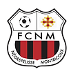 logo FC negrepelisse.png