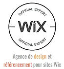 creation et conception de sites internet et web à albi, tarn, agence web albi expert wix et wix arena