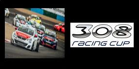 308 racing cup.jpg