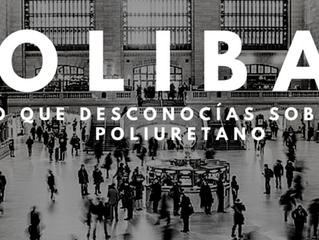 Bienvenidos al blog de POLIBAL !