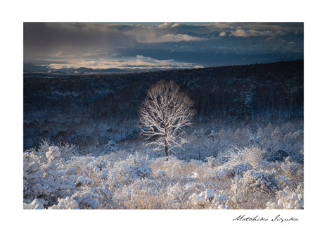 gallery_landscape_09.jpg