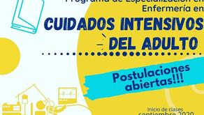 Postítulos Enfermería- Universidad de Concepción
