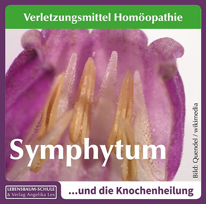 Symphytum officinalis