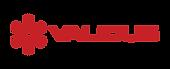 Validus logo-2.png
