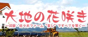 sasaki (1).png