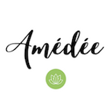 logo-amedee-small.png