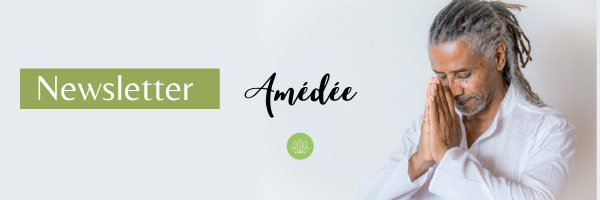 newsletter-amedee1.png