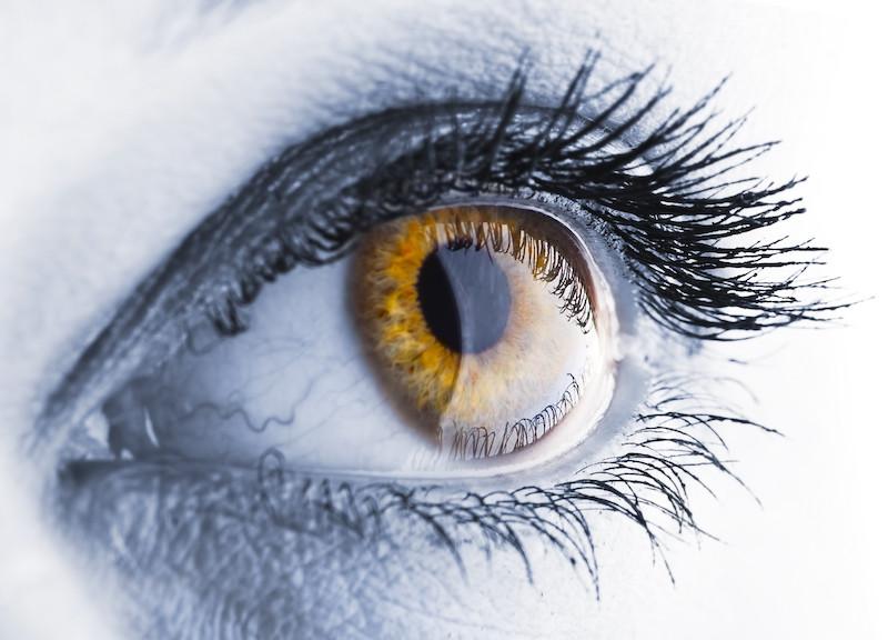 Hypnose, une voie de transformation
