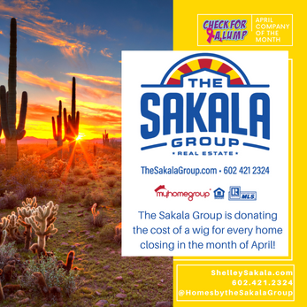 April Company of the Month The Sakala  Group