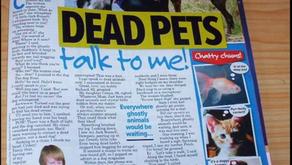 Dead Pets Talk to Me