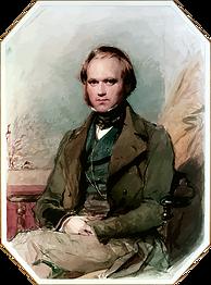 Darwin3.png