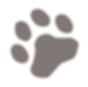 paw2_back_edited.png