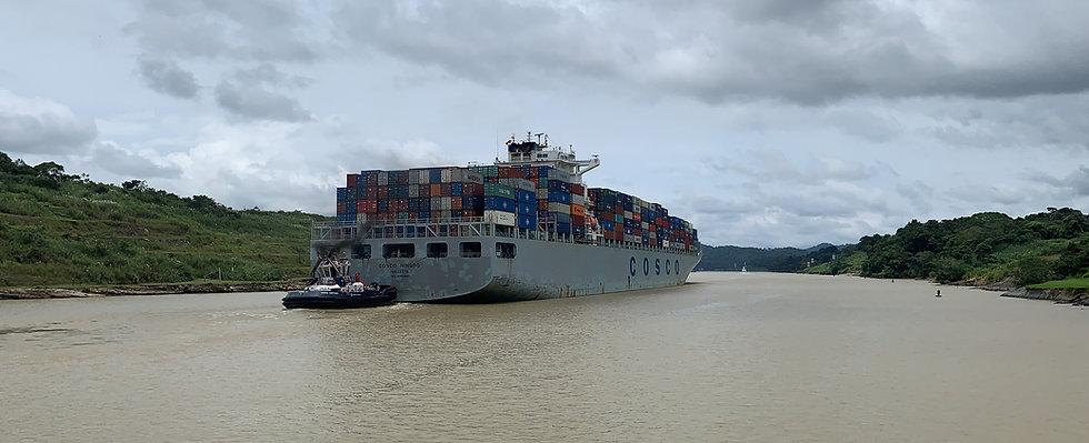 Comercializadora, exportación, importación, comercio global
