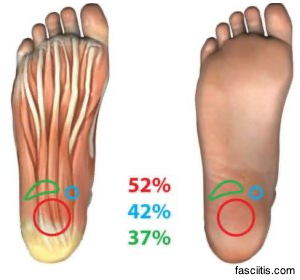 illustration of two foot displaying the pressure percentage on the heel