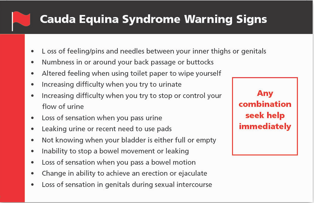 Cauda equina syndrome warning signs list