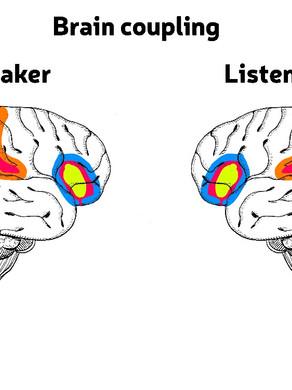 Brain coupling