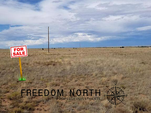1.0  acres in the stunning Torrance County, New Mexico
