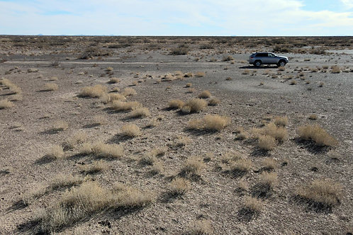 4 Beautiful New Mexico desert 0.5 Acre lot